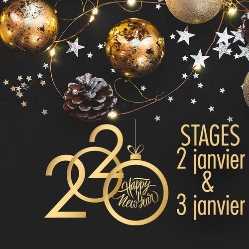 Stage de Janvier